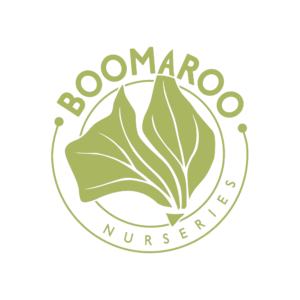 logo-boomaroo-rsize